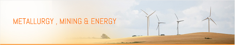 Metallurgy , Mining & Energy